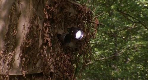 cámaras de vigilancia oculta