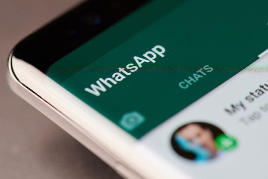 ¿Cómo silenciar grupos de WhatsApp para siempre?