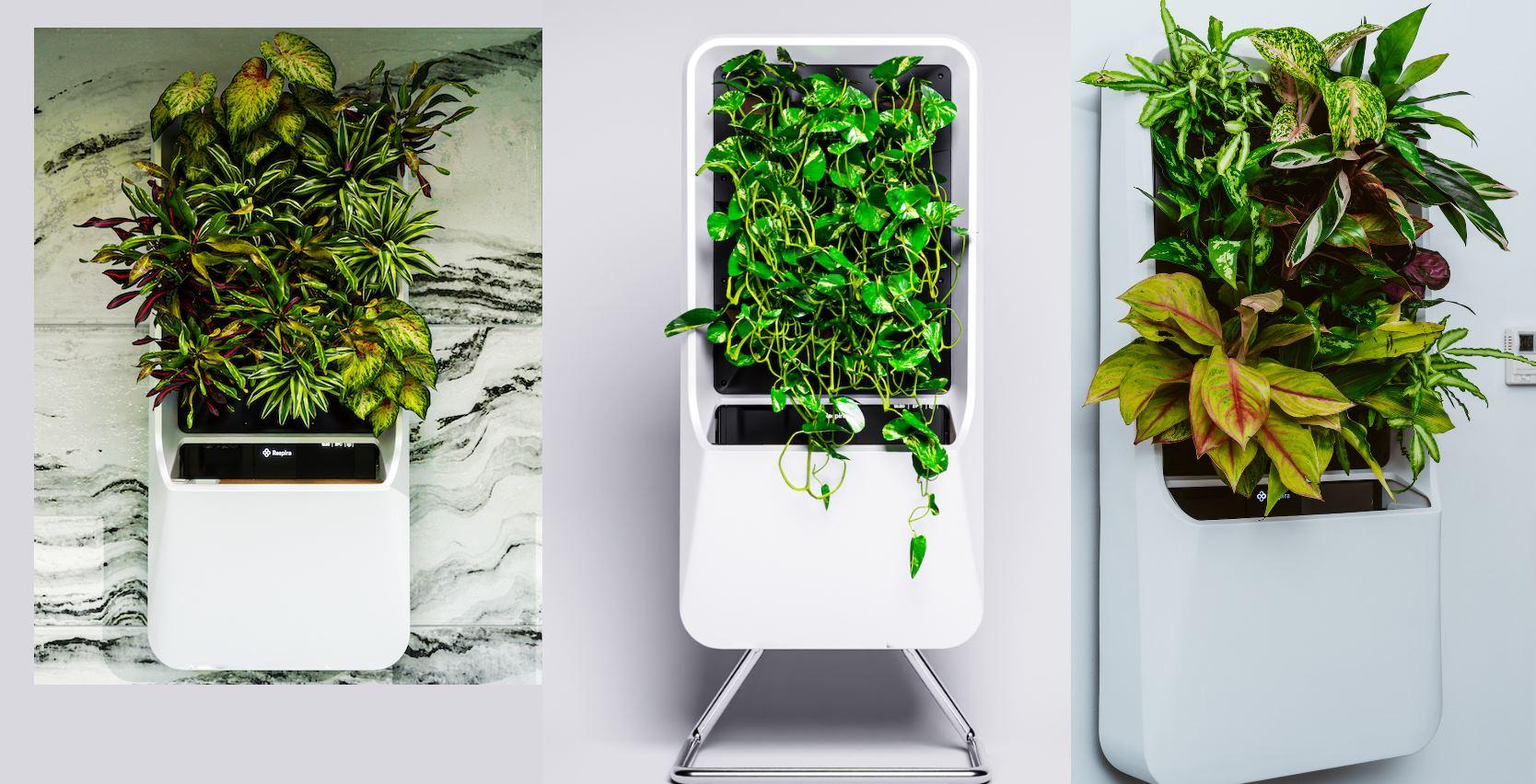 Respira, una maceta que permite tener plantas sin tierra y gestionadas desde el móvil.